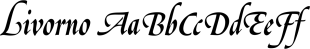 Livorno font family mini
