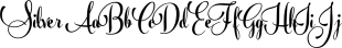 Silver font family mini