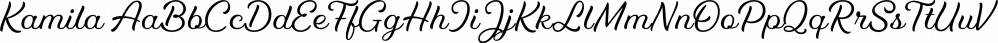 Kamila font family by SevenType