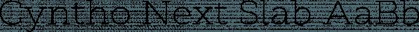 Cyntho Next Slab font family by Mint Type