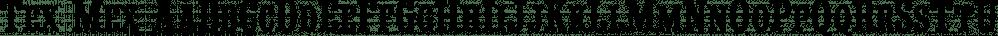 Tex Mex font family by FontMesa