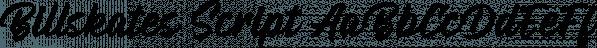 Billskates Script font family by Letterhend Studio