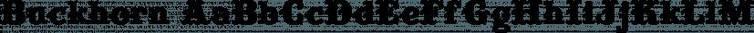 Buckhorn font family by FontMesa
