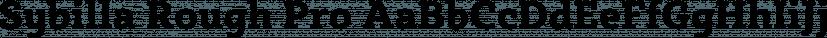 Sybilla Rough Pro font family by Karandash