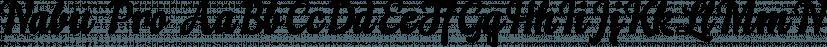 Nabu Pro font family by Eurotypo