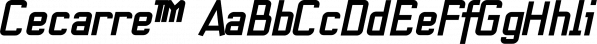Cecarre™ font family by MINDCANDY