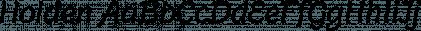 Holden font family by Zetafonts