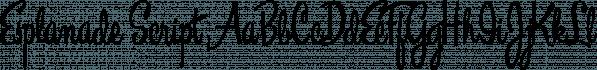 Esplanade Script font family by Måns Grebäck