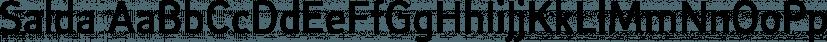 Salda font family by Hurufatfont Type Foundry