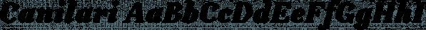 Canilari font family by W Foundry