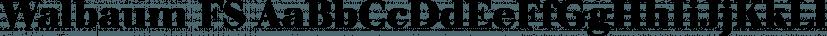 Walbaum FS font family by FontSite Inc.