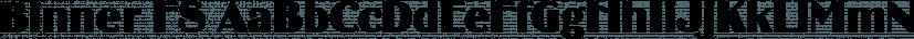 Binner FS font family by FontSite Inc.