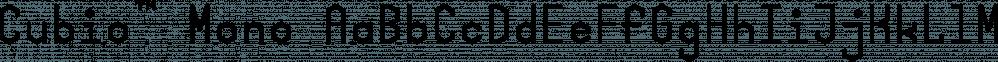 Cubio™ Mono font family by R9 Type+Design