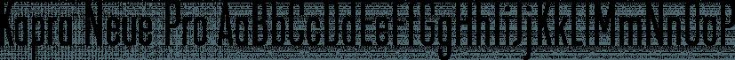 Kapra Neue Pro font family by Typoforge Studio