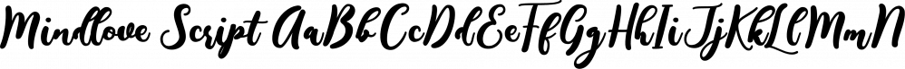 Mindlove Script font family by Bonjour Type