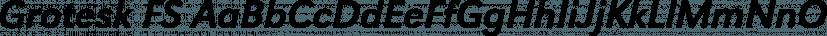 Grotesk FS font family by FontSite Inc.