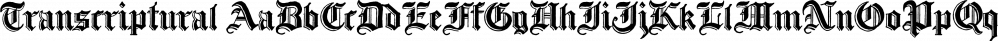 Transcriptural font family by E-phemera Fonts