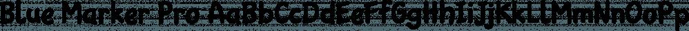 Blue Marker Pro font family by Kentype
