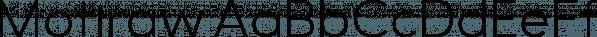 Motiraw font family by Typesketchbook