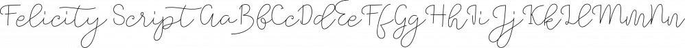 Felicity Script font family by Picatype Studio