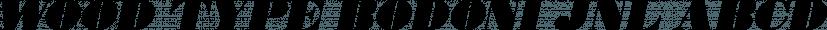 Wood Type Bodoni JNL font family by Jeff Levine Fonts