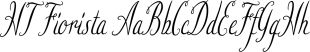 HT Fiorista font family mini