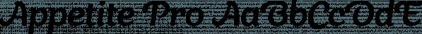 Appetite Pro font family by Serebryakov