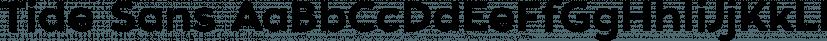 Tide Sans font family by Kyle Wayne Benson