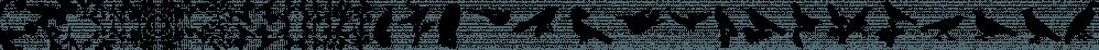 LoveBirds Pattern font family by PintassilgoPrints