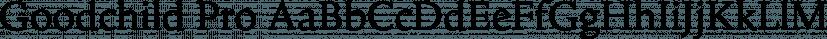 Goodchild Pro font family by Shinntype