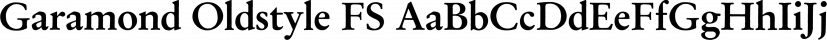 Garamond Oldstyle FS font family by FontSite Inc.