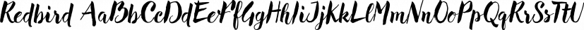 Redbird font family by Eurotypo