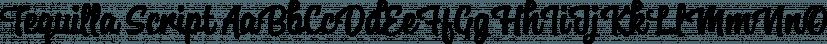 Tequilla Script font family by Alphabeta