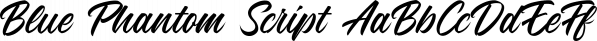 Blue Phantom Script font family by Letterhend Studio