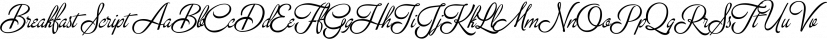Breakfast Script font family by Fenotype