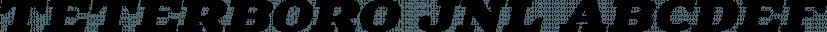 Teterboro JNL font family by Jeff Levine Fonts