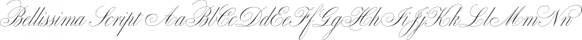 Bellissima Script font family by Sudtipos