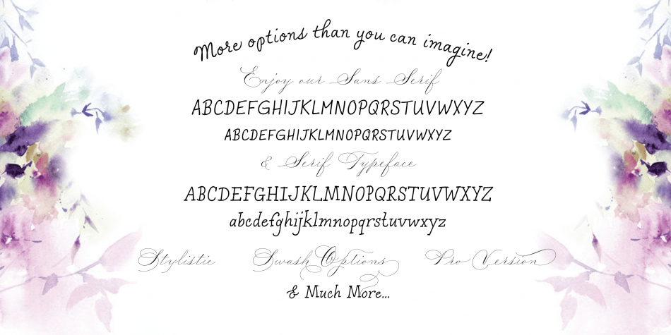 Download Madison Street Font Family